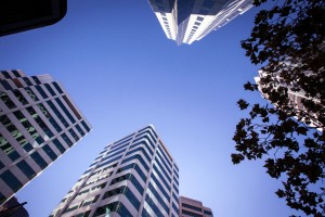 Upward view to the towers of Chatswood, taken from Victoria Avenue for management consulting firm, Evans & Peck
