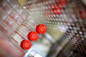 Sample bottles in a laboratory refrigerator. They are collected as part of research into the prevention of childhood cancer by the Children's Cancer Institute Australia.